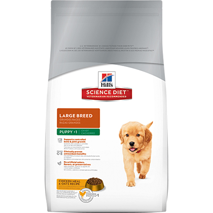 Hill's Science Diet Puppy Large Breed Dry Dog Food (Click for Larger Image)