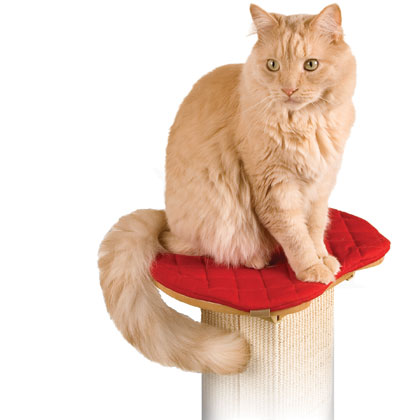 SmartCat Ultimate Cat Scratching Post Pad (Click for Larger Image)