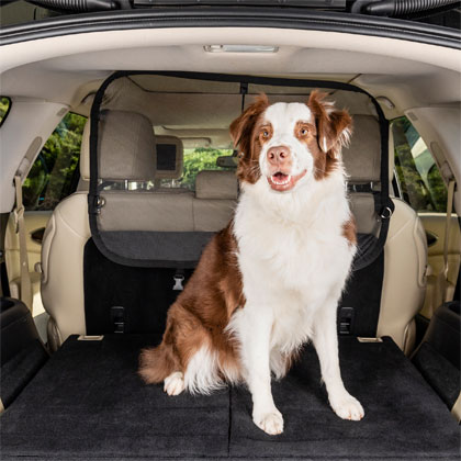 Solvit Cargo Area Net Pet Barrier (Click for Larger Image)