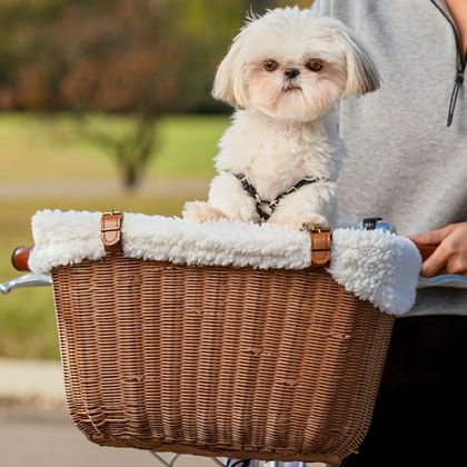 Solvit Wicker Dog Bicycle Basket (Click for Larger Image)