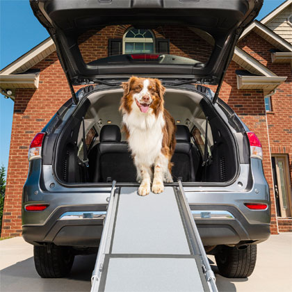 Solvit Telescoping Dog Ramps (Click for Larger Image)