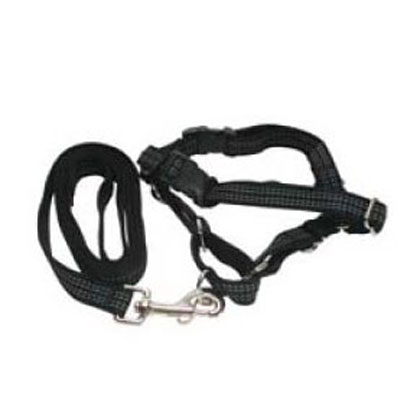 Reflective Easy Walk No-Pull Harness for Dogs (Click for Larger Image)