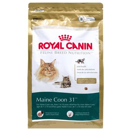 royal canin maine coon 31 dry cat food 1800petmeds. Black Bedroom Furniture Sets. Home Design Ideas