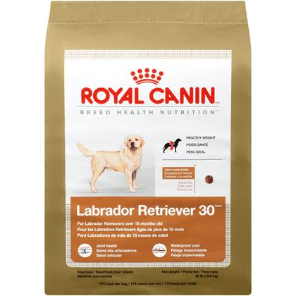 Royal Canin Labrador Retriever Dry Dog Food (Click for Larger Image)