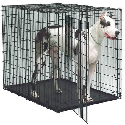 Extra Large Dog Crate (Click for Larger Image)