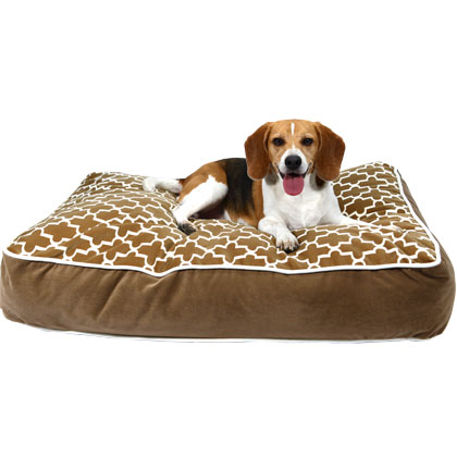 Bowsers Designer Dog Bed (Click for Larger Image)