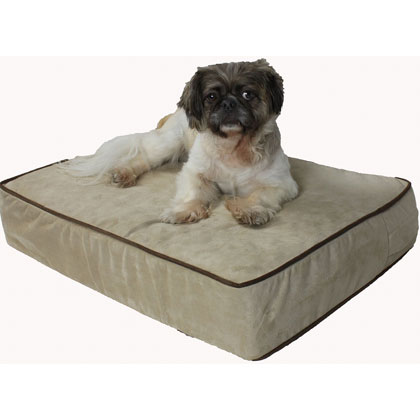 Snoozer Outlast Dog Bed Sleep System - 5 Inch Foam (Click for Larger Image)