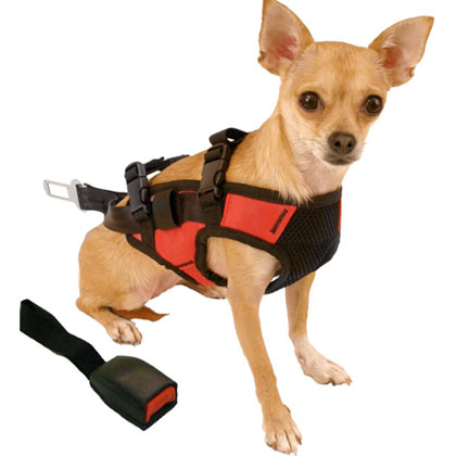 Snoozer Pet Safety Harness and Adapter (Click for Larger Image)