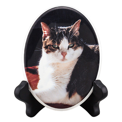 Pet Photo Porcelain Oval Collectible (Click for Larger Image)