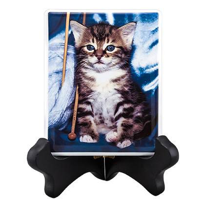 Pet Photo Porcelain Rectangular Collectible (Click for Larger Image)