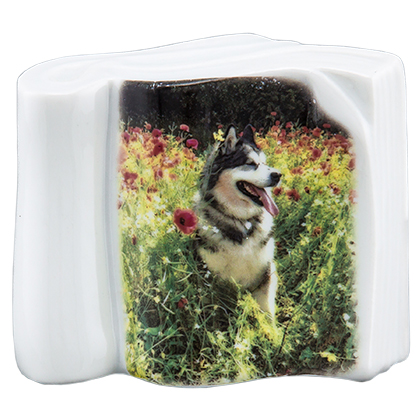Pet Photo Porcelain Stand Up Collectible (Click for Larger Image)