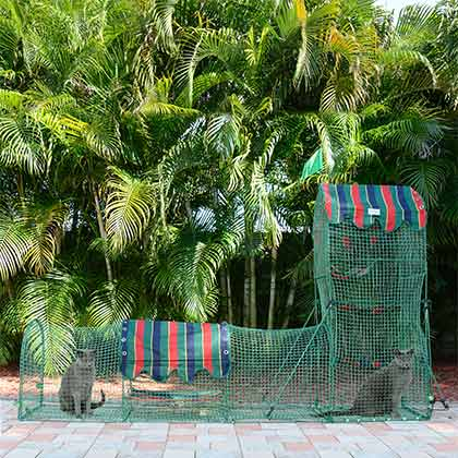 Kittywalk Outdoor Cat Enclosure (Click for Larger Image)