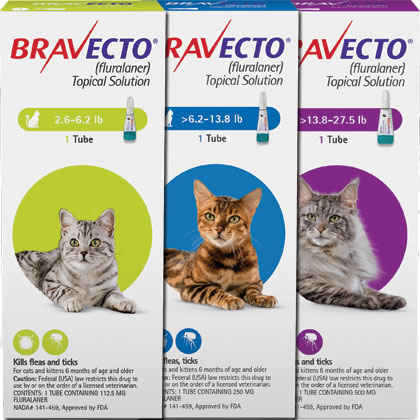 Bravecto For Cats Topical Flea Treatment 1800petmeds
