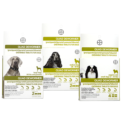 Bayer Quad Dewormer Chewable Tablets for Dogs (Click for Larger Image)