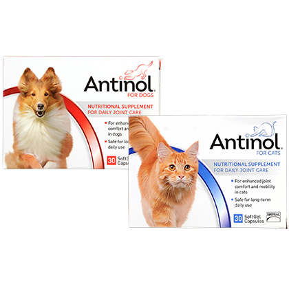 Antinol for Dogs and Cats (Click for Larger Image)