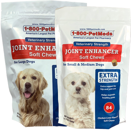 Veterinary Strength Joint Enhancer with MSM Soft Chews (Click for Larger Image)