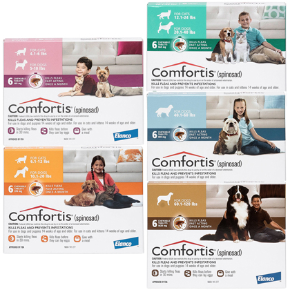Comfortis (Click for Larger Image)