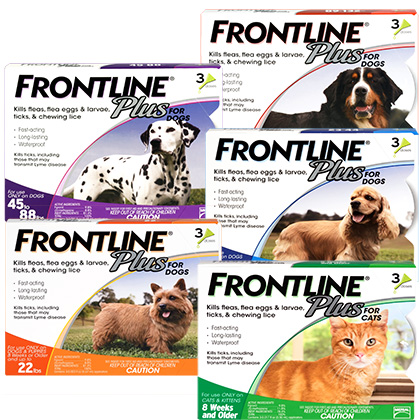 Frontline Plus (Click for Larger Image)