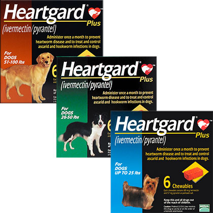 Heartgard Plus for Dogs Free Shipping 49 1800PetMeds