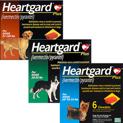 Heartgard Plus Chewables (Click for Larger Image)
