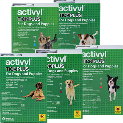 Activyl Tick Plus For Dogs Tick And Flea Control