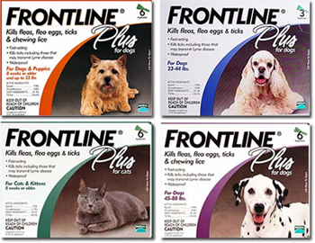 Frontline Plus kills fleas on dogs and cats