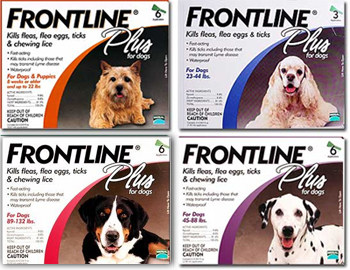Frontline Plus kills fleas and ticks off your dog and cat