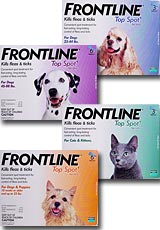 Frontline Top Spot kills fleas and ticks off your dog and cat