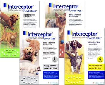 Prevent heartworm disease with Interceptor heartworm medicine