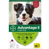 Advantage 6pk Dog Red 21-55 Lbs