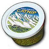 Catnip (Click for Larger Image)