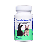 Proanthozone Antioxidant 20mg 60ct For Medium Dogs