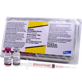 Bronchi-Shield ORAL with Syringes