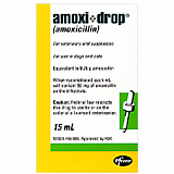 Amoxicillin Drops (Click for Larger Image)