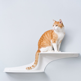 Refined Feline Cat Clouds Cat Shelf