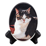Pet Photo Porcelain Oval Collectible