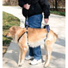 Find Full Body Dog Lifting Harness on 1-800-PetMeds