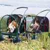 Find Kittywalk SUV Pet Stroller on 1-800-PetMeds