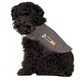 XXS Thundershirt for Anxiety Relief in Dogs