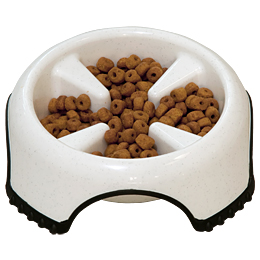Slow Feed Non-Skid Dog Bowl