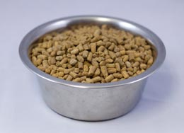 Wysong Epigen Dry Dog & Cat Food at PetMeds