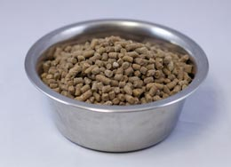 Wysong Epigen 90  Dry Dog & Cat Food at PetMeds