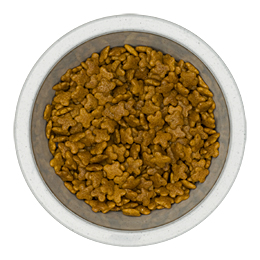 Find Royal Canin Mini Adult Dry Dog Food at PetMeds