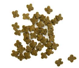Now! Grain Free Dry Dog Food