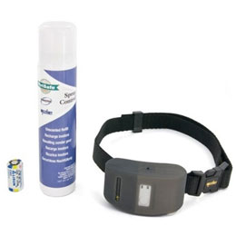 Find the PetSafe Dog Collar at 1-800-PetMeds